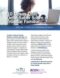 cover photo of 10 Cosas Que Debe Saber Sobre el Tribunal Familiar